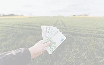 Wissen Was kostet eine Website?